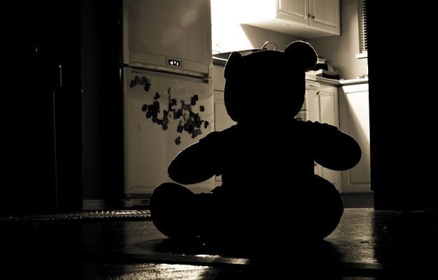 teddy-shadow